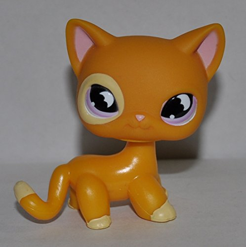 Shorthair #855 (Orange, Purple Eyes, White Paws) - Littlest Pet Shop (Retired) Collector Toy - LPS Collectible Replacement Single Figure - Loose (OOP Out of Package & Print)