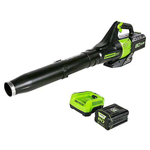 Greenworks Pro 80V (145 MPH / 580 CFM) Brushless Cordless Axial Leaf Blower, 2.5Ah Battery and Charger Included BL80L2510