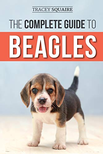 Best Beagle Training Books