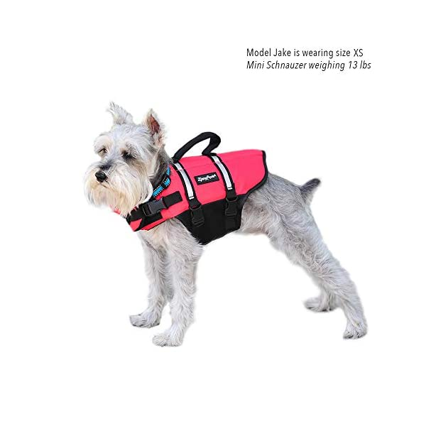 Zippy Paws Life Jacket Dog, Red, Small Click on image for further info. 3
