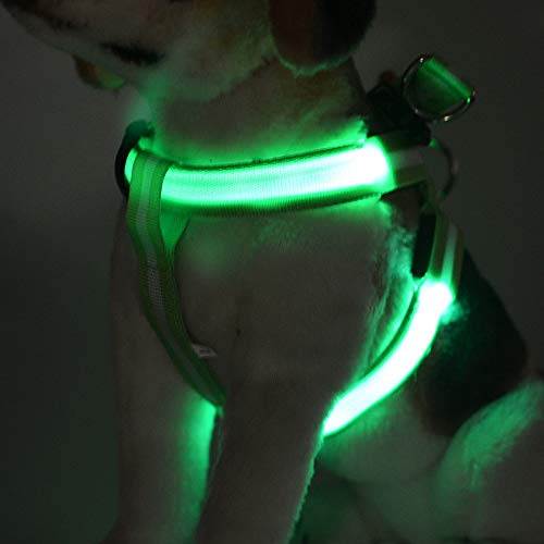 Hundegeschirr, LED-Lade leuchtende Haustiere Weste Medium Dog Large Dog, tragbare und komfortable Outdoor-Training,Grün,