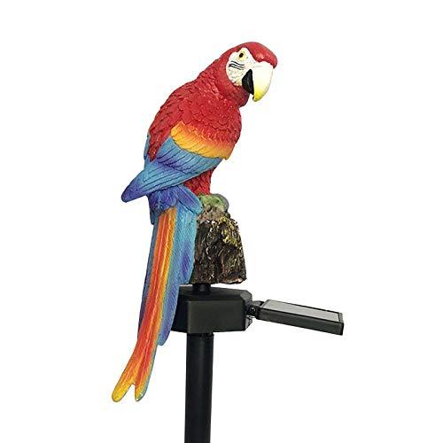 CQWW - Decorazione da giardino, in resina, a forma di pappagallo, lampada solare per esterni, lampada da giardino, impermeabile, per vialetti, giardini, luci di paesaggio (rosso)