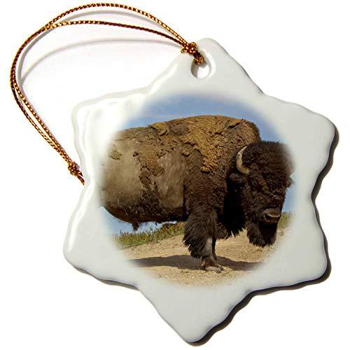 3dRose National Bison Range, Montana, USA. Bison After dust-Bathing. - Ornaments (ORN_331690_1)
