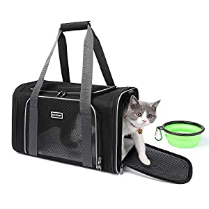ACCOFASH Pet Cat Carrier, Soft Sided Small Dog Travel Carrier Bag, Airline Approved, Anti-Slip Zipper, Comfortable, Lightweight, Ventilated, Collapsible (Black)
