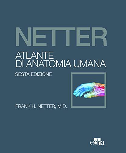 Netter, Atlante di Anatomia Umana - sesta edizione - Brossura - 1