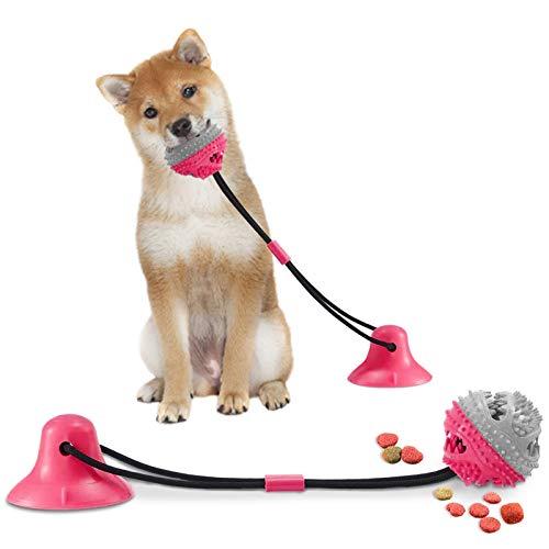Hundespielzeug mit saugnapf, Hundezahnbürste, Pet Molar Chew Spielzeug, Hundezahnbürste Kauspielzeug, Zahnreinigung mit Zahnpflege-Funktion für Hund