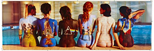 Pyramid Puerta - Poster con diseño Pink Floyd Back Catalogue, 53 x 158 cm