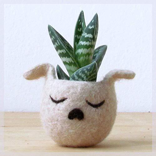Felted Succulent Puppy Planter