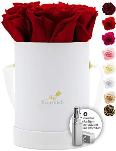 Rosenlieb Rosenbox Weiß mit 4 Infinity Rosen (3 Jahre haltbar)| Echte konservierte Rosen | Flowerbox inkl. Grußkarte Geschenk für Frauen Freundin Oma Pico Bellissima, Rot