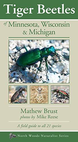 TigerBeetlesof Minnesota, Wisconsin & Michigan (Naturalist Series)