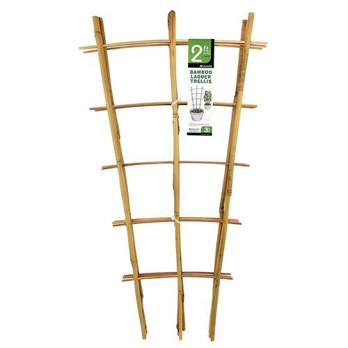 Mininfa Natural Bamboo Trellis, 2FT Garden Ladder Trellis, Plant Trellis for Climbing Plants, Vegetables, Pots - 3 Pack
