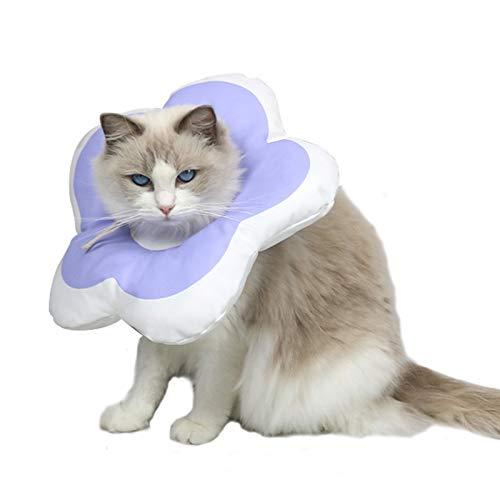 DaMohony Pet Recovery Halsband für Katzen, Welpen, nach Operationen, Wundheilung