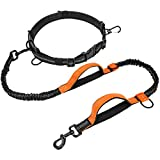 FunniPets Hands Free Dog Leash, Running Leash for Small Medium and Large Dogs with Dual Bungees and Padded Handles, Reflective Stitching, Adjustable Waist Dog Leash for Walking Jogging and Hiking