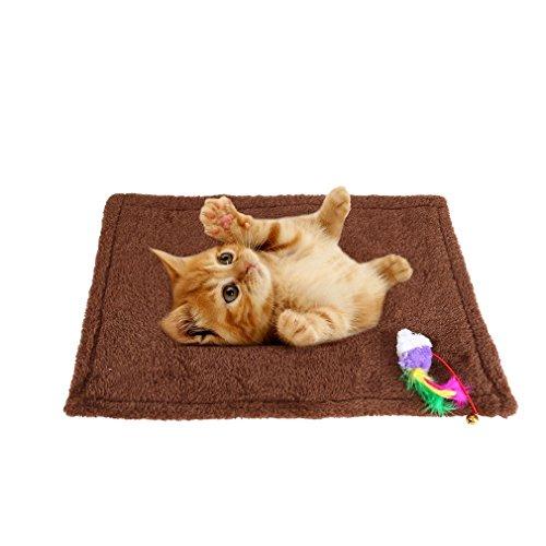 ALTERDJ Katzen-Kratzmatte Katzenteppich -, Sisal, Langlebige Rutschhemmende Sisal-Matte, Geeignet für Fußbodenheizung, Krallenpflege Sisalteppich für Wand & Boden