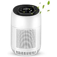 Icetek H13 True HEPA Filter Air Cleaner