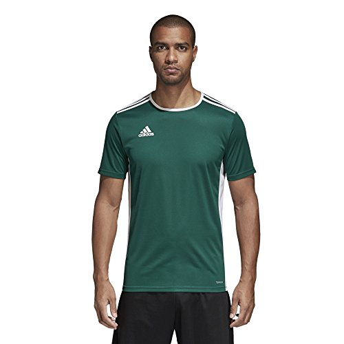 adidas Men's Soccer Entrada 18 Jersey, Collegiate Green/White, Large