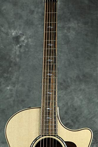 Taylor/814ceV-ClassNaturalテイラーアコースティックギターエレアコ