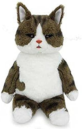 A Series mysterious cat world plush doll S Oranges
