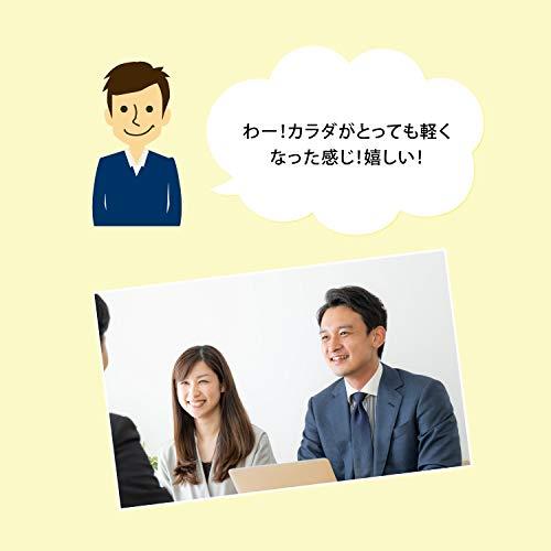 ドリームラボネッツ『骨盤座椅子凛座』