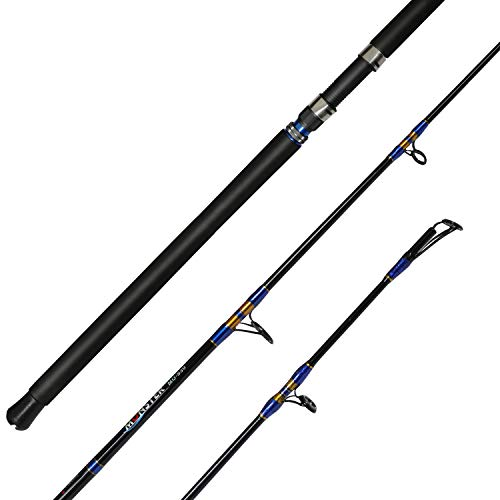 Fiblink Jigging Spinning Rod 1-Piece Saltwater Fishing Jigging Jig Rod...