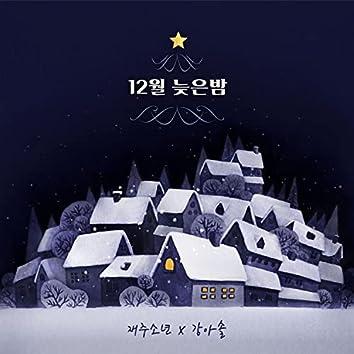 Night in December