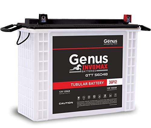 Genus Invomax GTT56048 PP 150 AH Tall Tubular Inverter Battery for Home and Office (White)