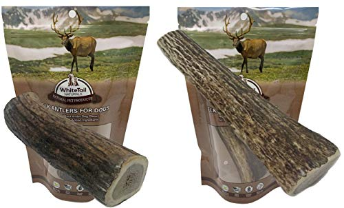 WhiteTail Naturals Whole Elk Antlers for Dogs (XL and Large Bundle) Natural Dog Chews   Naturally Shed Antler Bone Chew Toy