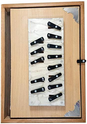 India Professionele Handgemaakte Shruti doos lange uithoudingsvermogen zeer goede drone geluid handgemaakte shruthi doos Hout Shruti Box met Tas (Cream)