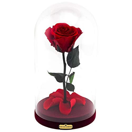 Rose du Château - Rote Ewige Rose - Rosen Im Glas - Glass Dome - Echte Rosen die bis zu 2 Jahren blühen – Blumen – Blumendeko