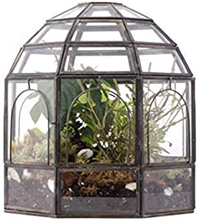 terrarium for birds