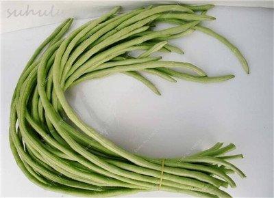 8 Pcs Multi Color haricots desserrées graine long des haricots semences Graines de plantes en pot poussent plus vite vivaces Fleurs Plant Garden 5