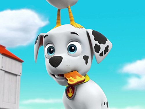 Top 10 tracker jeep paw patrol for 2020