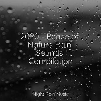 2020 - Peace of Nature Rain Sounds Compilation