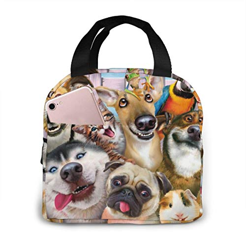 Funny Animal Dog Pug Husky Lunch Bag Insulated Lunch Box Waterproof Meal Prep Cooler Tote For Picnic Camping Work Travel