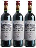 Buzet d'Artagnan, Vin Rouge, par lot de 3 bouteilles de 75 cl