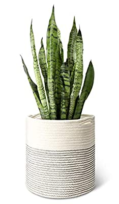 "Mkono Cotton Rope Plant Basket Modern Indoor Planter Up to 11 Inch Flower Pot Woven Storage Organizer with Handles Home Decor, 12"" x 12"""