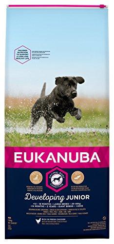 Eukanuba - Nourriture pour Chiots de Grande Taille - Riche en Poulet Frais - pour Un Corps Optimal