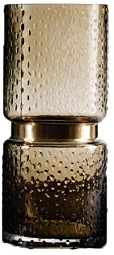 Transparante bruine glazen vaas Bloemen Bloem Inserter for Home Decoration zonder bloemen (Color : C)