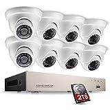 XBRMMM Sistema Cámara Videovigilancia Domo Full HD 1080P 8 Canales, 1080P HDMI DVR con 8 Cámaras Externas 2.0MP, Sistema CCTV, Disco Duro 2TB, Visión Nocturna IR 20M, Detección Movimiento