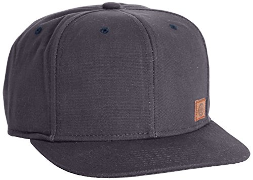 Dickies Herren Baseball Kappe Minnesota, Gr. One size, Grau (Charcoal Grey CH)