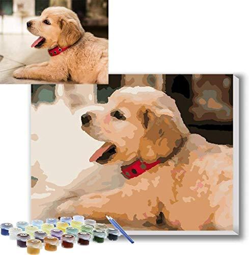 Foto Personalizada Pintar por Numeros Adultos Lienzo Personalizado Con Foto Personaliza tu Propia Imagen Kits de Pintura de Mascotas y Retratos Regalos Personalizados de bricolaje, Con marco 30X40CM