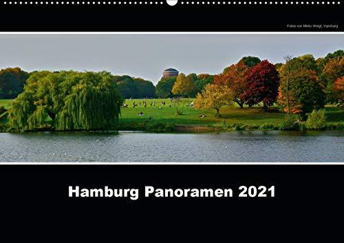 Hamburg Panoramen 2021 (Wandkalender 2021 DIN A2 quer)
