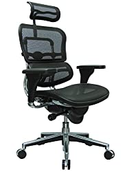 ErgoHuman Office Chair For Bad Backs