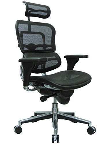 Ergohuman High Back Swivel Chair with Headrest, Black Mesh &...
