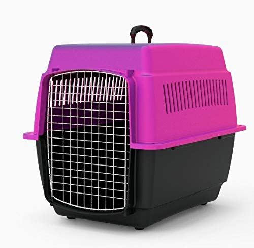 Transportadora Para Perro marca Duna