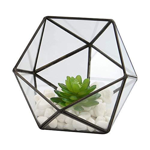Demi-boule en verre terrarium | Plante d'intérieur | Plante en pot | Mini serre | Kit de terrarium | Usine de table basse | M&W