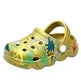 Toddler Boys Girls Dinosaur Graphics Garden Shoes Kids Clogs Shoes Slides Slippers Pool Beach Sandals Green 17
