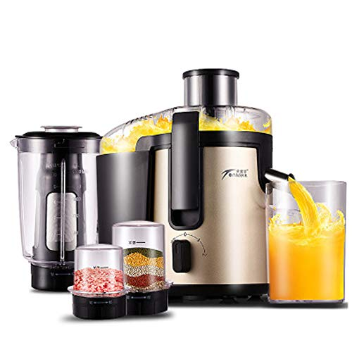 Review Of WGFGXQ High-Power Juicer, Multi-Function Stainless Steel Fruit Juicer, Suitable Home Use,C...