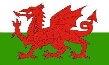 Wales Welsh Dragon Sleeved Boat and Tree House Flag 45cm x 30cm by 1000 Flags