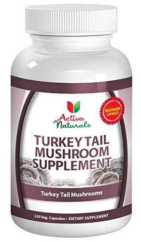 Turkey Tail Mushroom Supplement - 120 Veg. Capsules with Coriolus Versicolor Mushrooms